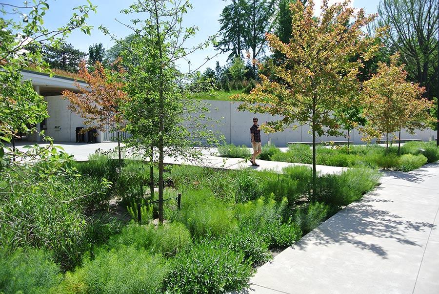 HMWhite   HM White, Brooklyn Botanic Garden Visitor Center, Institutional Landscape  Architecture